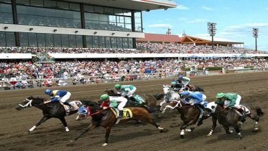 Photo of Horse Racing Odds