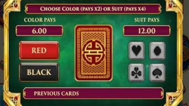 Photo of What is the gamble feature in slots?