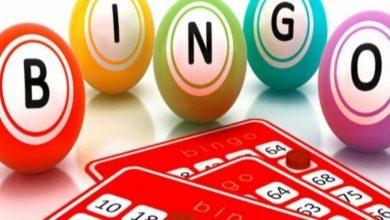 Photo of Are bingo bars the new trend?