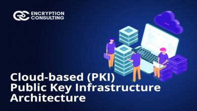 Photo of What is Public Key Infrastructure (PKI)? And How it Protects Almost Everything Online?