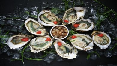 Photo of Oysters and Vibriosis: Causes of the Vibriosis Infection and Prevention