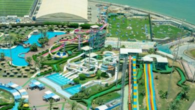 Photo of What is involved in Waterpark Construction and Maintenance?