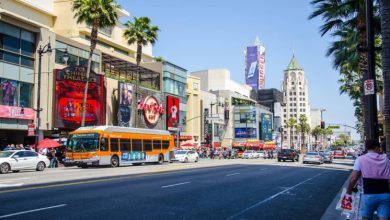 Photo of Trending reasons that you should move to Los Angeles